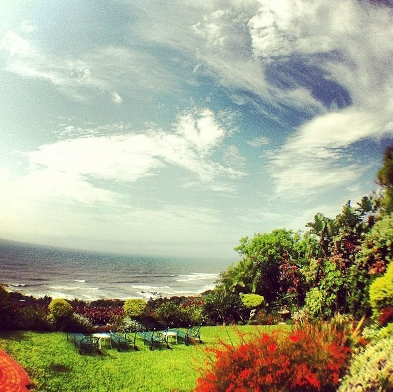Beautiful Africa in December. Kwazulu Natal. South Coast.