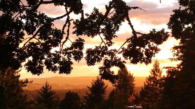 It's s beautiful night in Lake Oswego, Oregon Lake Oswego