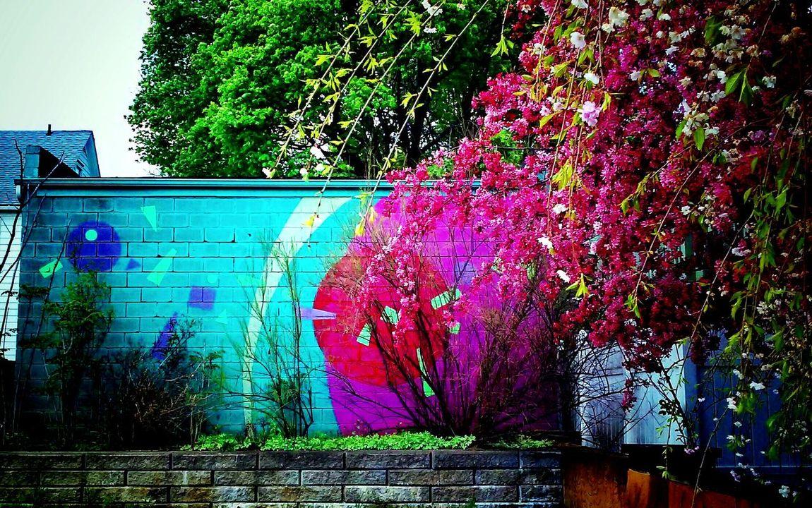 Vibrant Colors Mural Art Urban Landscape University Of Akron