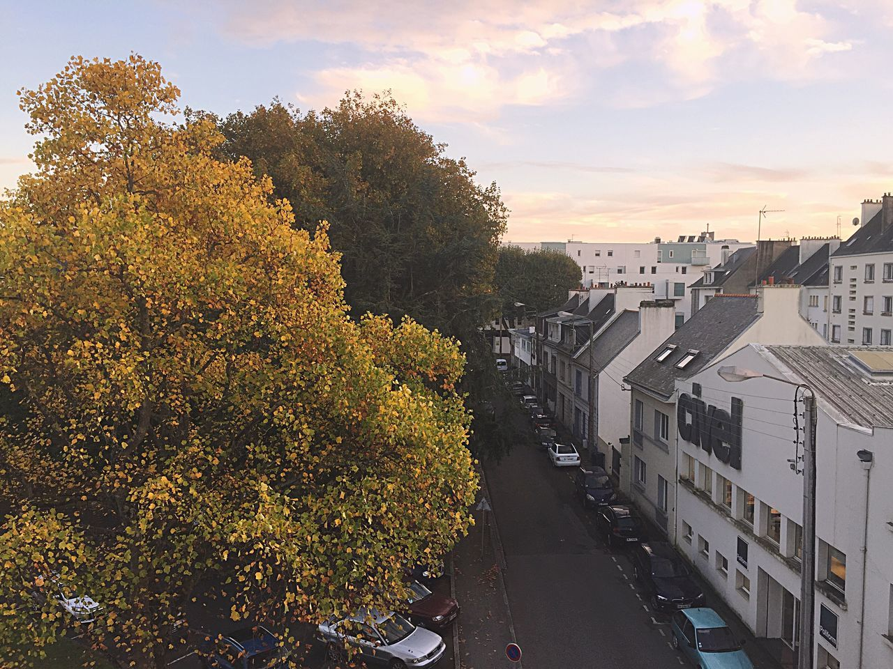 Tree Nature City Architecture Sky Autumn Yellow Cars Lorient First Eyeem Photo