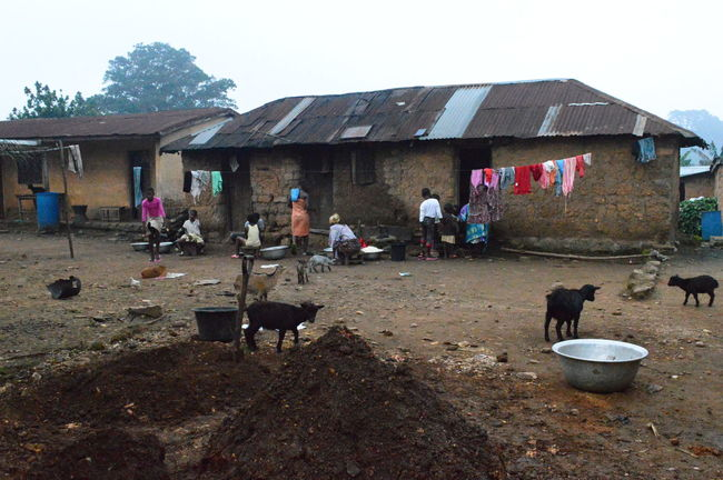 Africa African Built Structure Chevre  Nature Togo Village