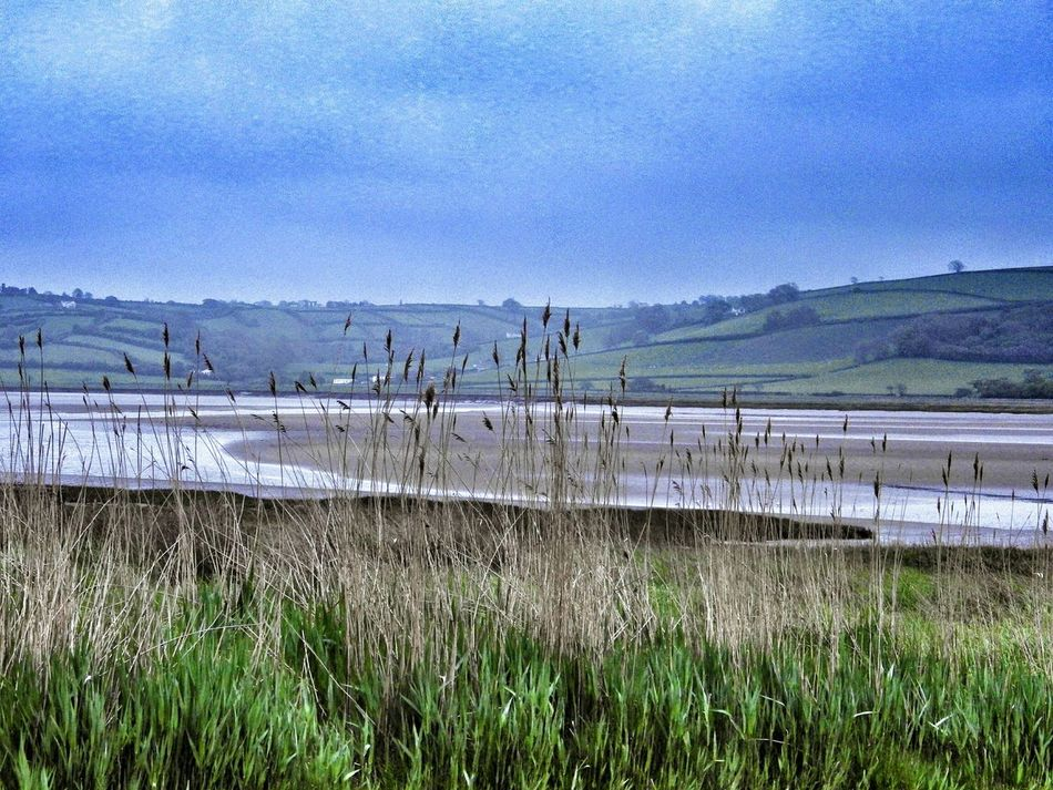 Wales Landscape Seascape Taking Photos Photography Check This Out Green Outdoors Countryside Nature