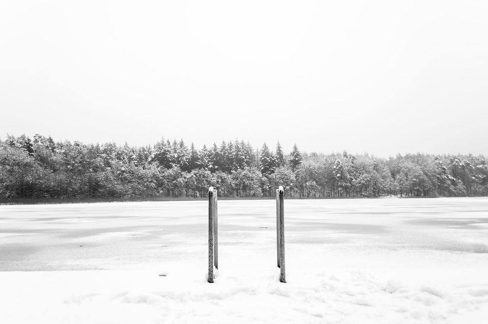 Time for a swim Beauty In Nature Cold Temperature Day Field Frozen Landscape Nature No People Outdoors Scenics Sky Snow Tranquil Scene Tranquility Tree Weather Winter
