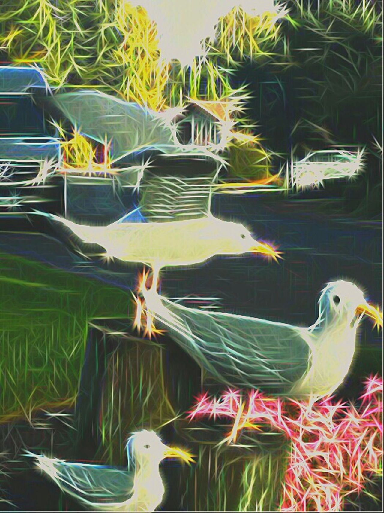 West Coast Seagulls Birds Of EyeEm  Birds_collection Animal Themes Beautiful Nature Yard Decorations Oregonexplored Oregon Coast Coastal Birds Flight Taking Flight Not Real Check This Out Taking Photos Nature Photography Live In The Moment Oregon Unlimited Sparkles Shine Bright Like A Diamond  Wings & Things Plastic Birds Yard Art West Coast Garden Art West Side Dha Best Side