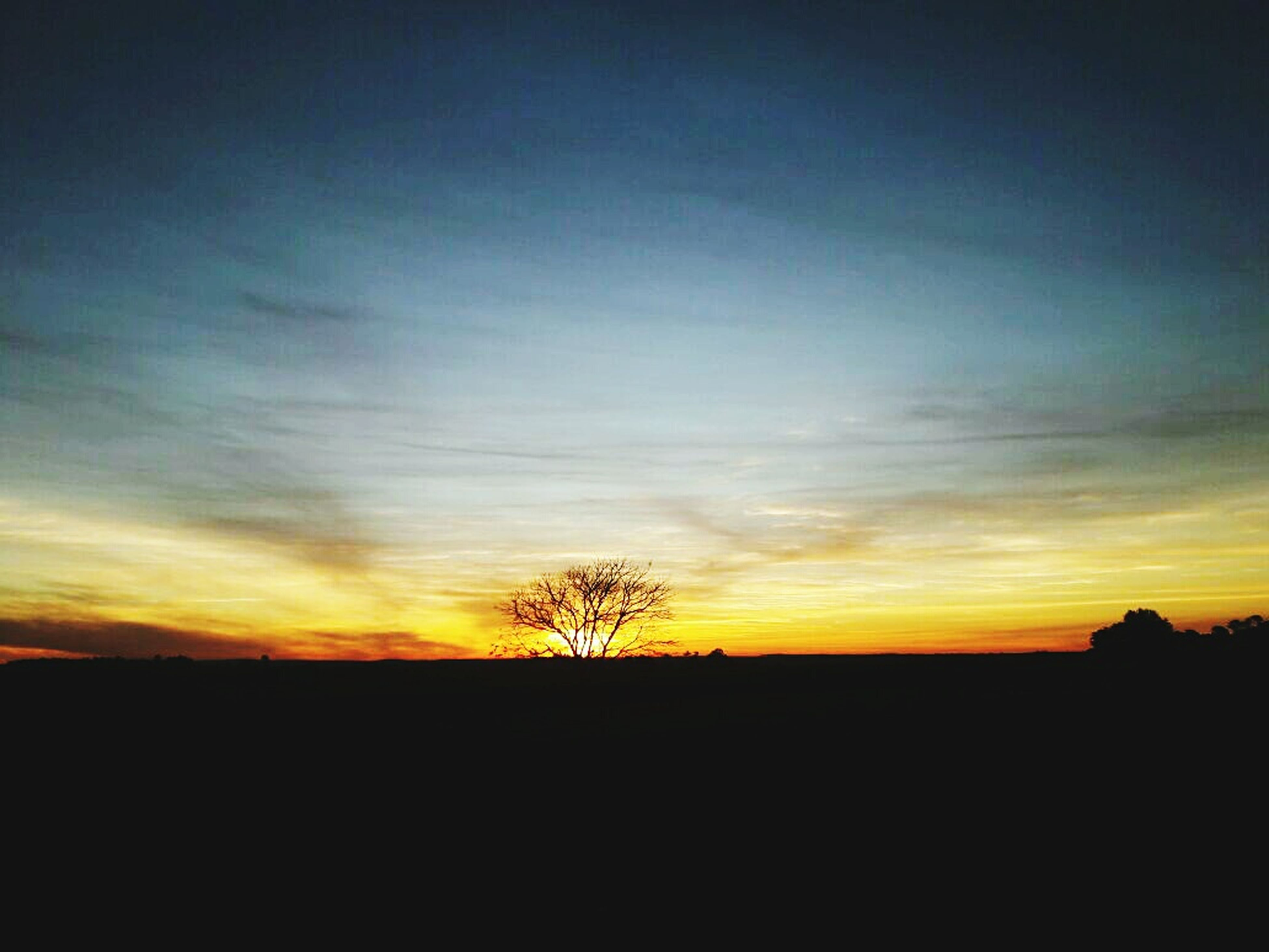 silhouette, sunset, landscape, tranquil scene, bare tree, tranquility, scenics, dark, sky, beauty in nature, nature, horizon over land, cloud, moody sky, field, outline, majestic, outdoors, calm, back lit, no people, dramatic sky, non-urban scene, solitude, remote, atmosphere, non urban scene, cloud - sky