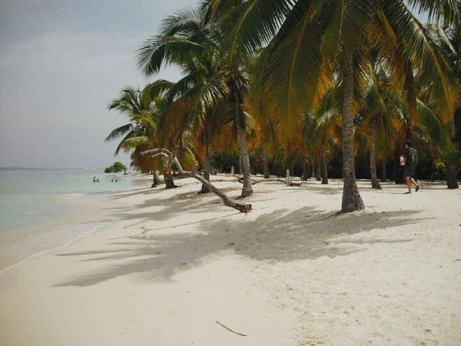 Summer Views En el Caribe,paraiso Playa En Morrocoy Venezuela