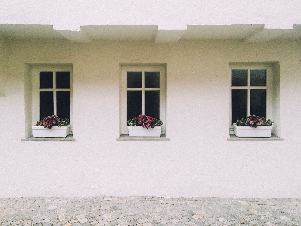 Three window and flowers Window Building Exterior Built Structure Architecture No People Outdoors Day Flowers