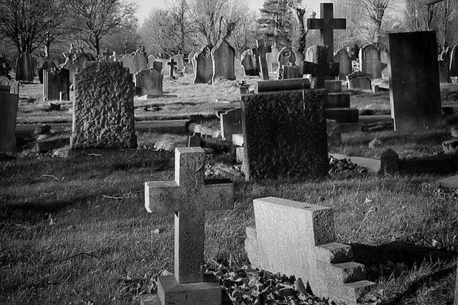 Bw_collection Monochrome Blancoynegro Black&white Photography Cemetery Graveyard Beauty Graveyard Black And Light Eye4photography  My Unique Style Noir Darkart Dark Photography Landscape