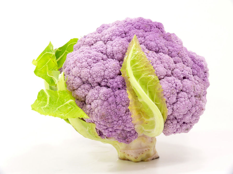 Abundance Cabbages Cabrol Choice Close Up Close-up Composition Food Food And Drink Freshness Full Frame Healthy Eating Indoors  Indulgence Large Group Of Objects No People On White Organic Ripe Still Life Temptation Variation Vegetable Violet