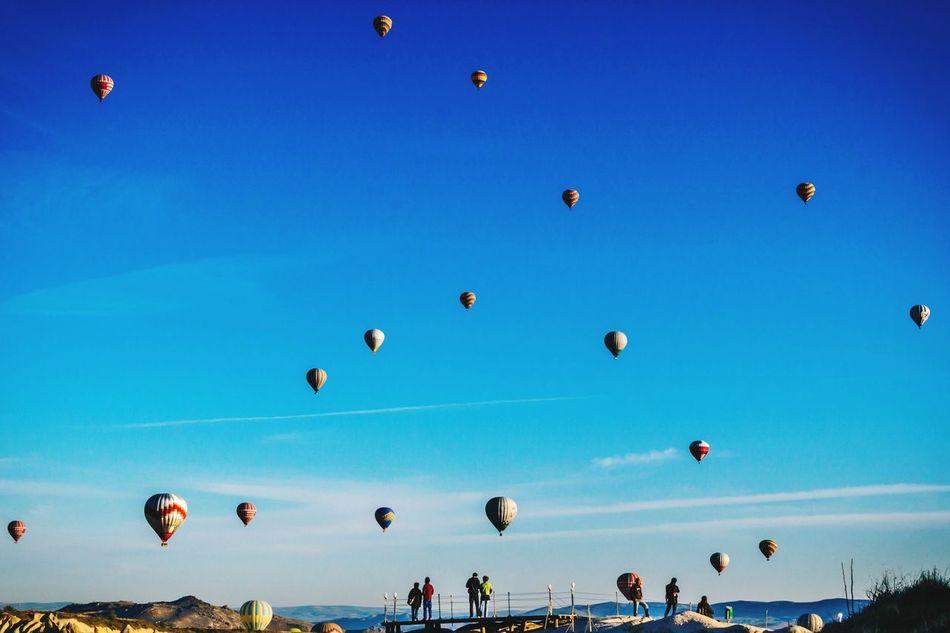 Beautiful stock photos of turkey, Abundance, Adventure, Air Vehicle, Airborne Sport