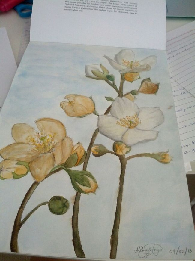 First attempt in painting flowers
