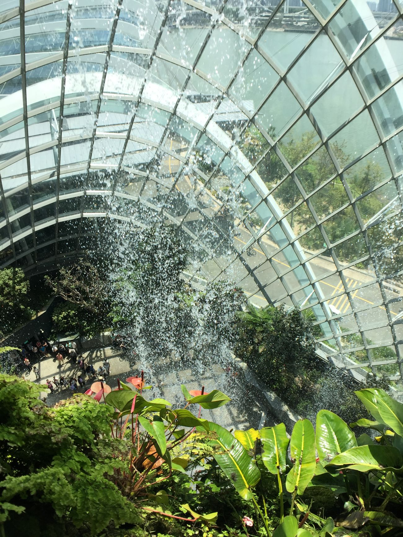 Cloud Forest @ Garden By The Bay Inmacusgear Smartimaging Iphone6 Inmacus IPhoneography Iphonephotography Iphonegraphy Iphonegrapher Mobilephotography Mobile Photography