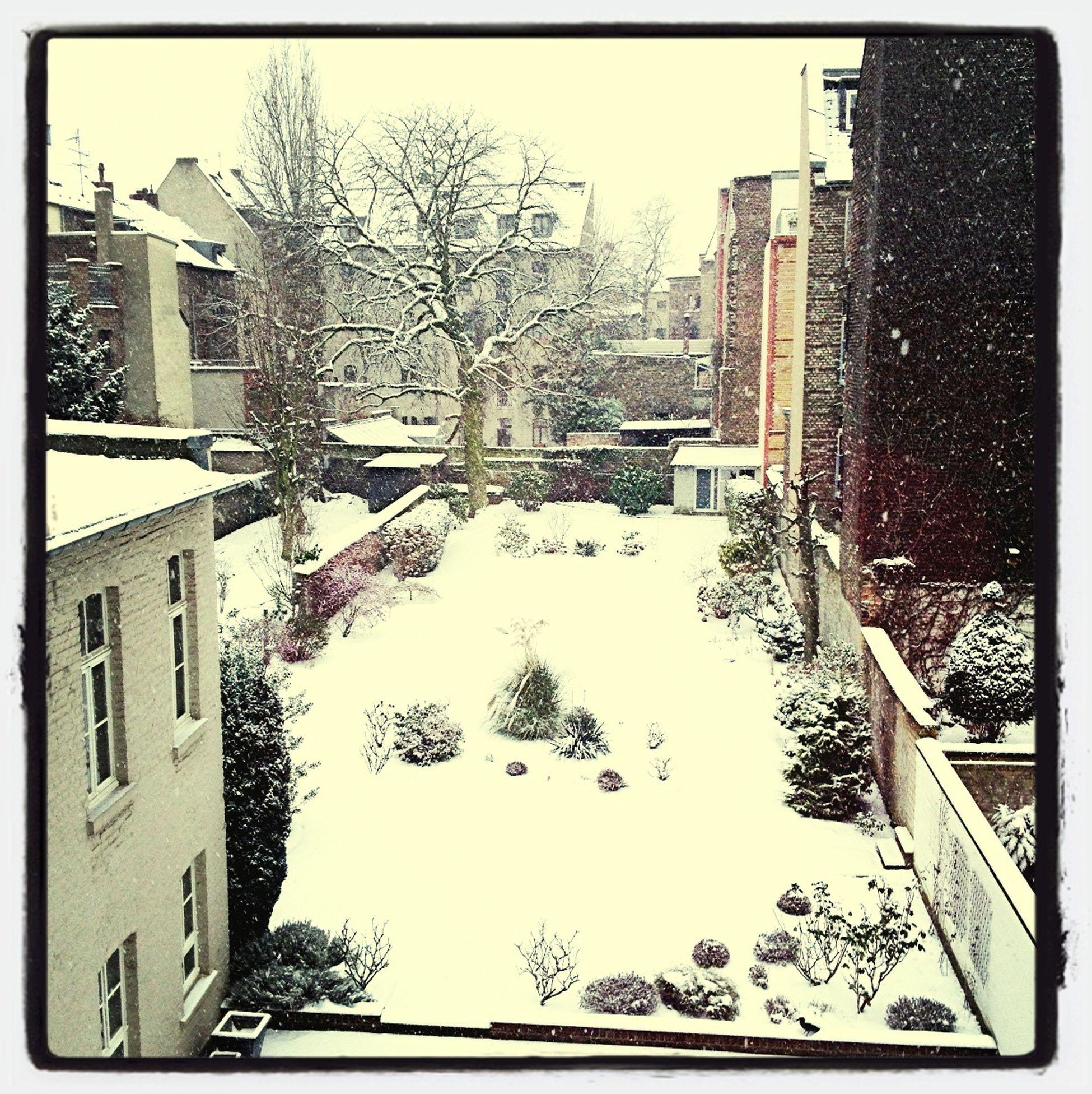An Einem Winter Morgen