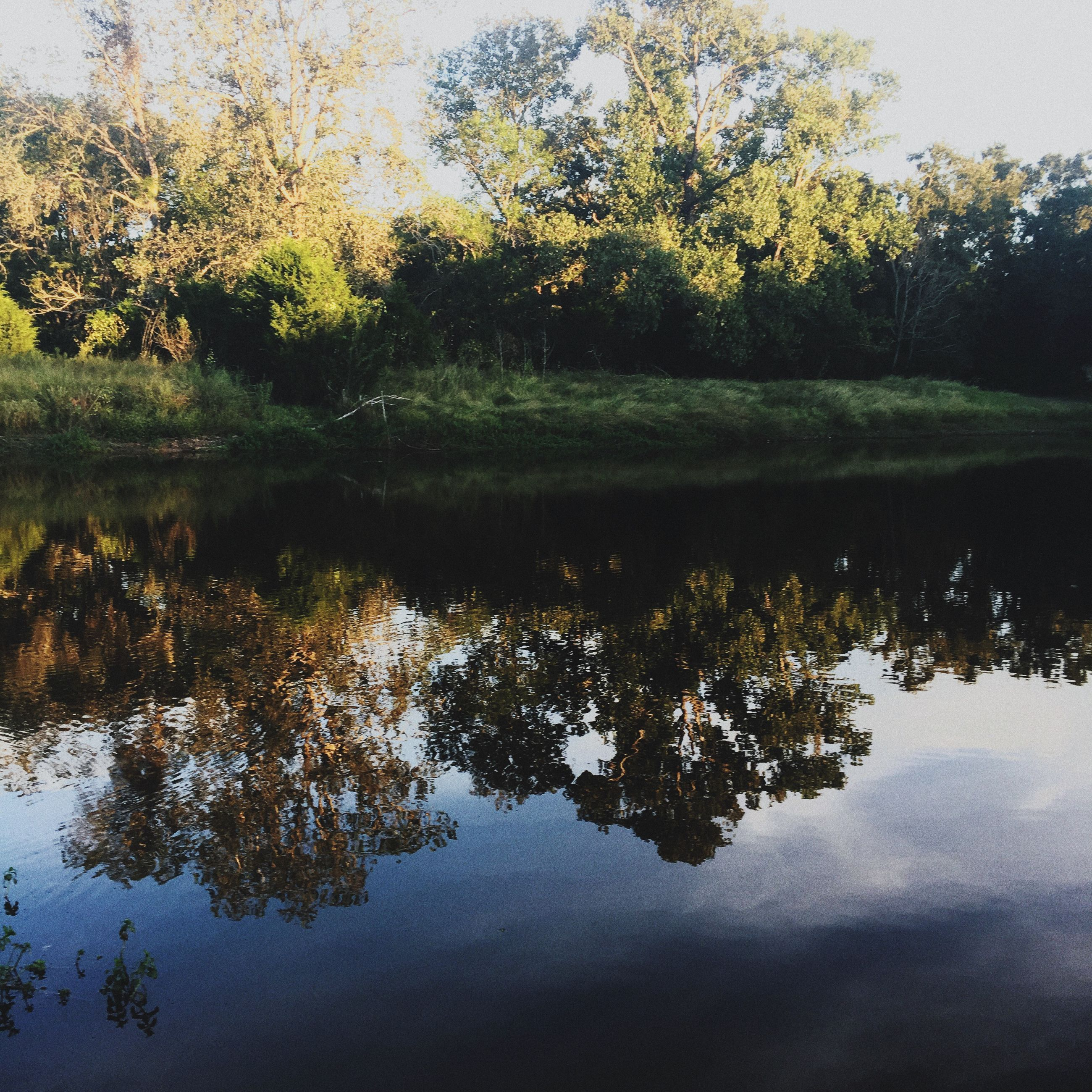 reflection, water, lake, nature, tree, standing water, beauty in nature, tranquility, tranquil scene, scenics, outdoors, waterfront, no people, sky, day, growth, forest