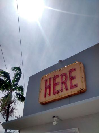 Bright Commercial Sign Day Here Low Angle View No People Outdoors Palm Tree Sign Sky Sun Sunbeam Text