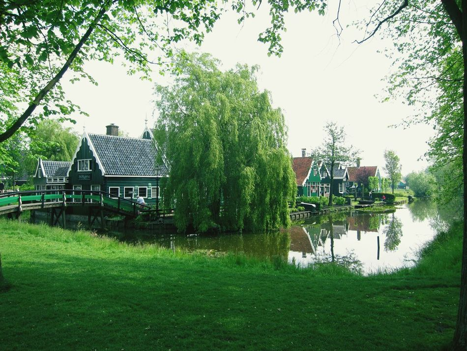 Zaandam Zaandijk Netherlands Farm Life Showcase July