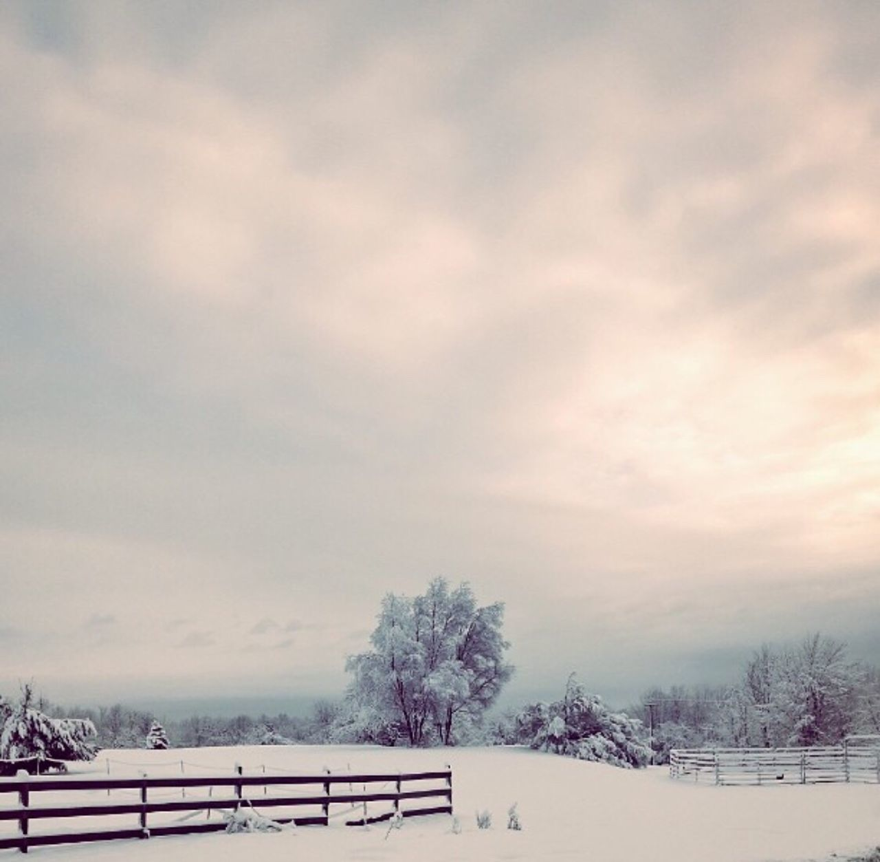 #Upstate Ny Winter #Winter #bryerpatchphotography Snow Cold Temperature Winter Weather Nature Bare Tree Tree Beauty In Nature Sky Cloud - Sky Outdoors Tranquility No People Scenics Day Landscape