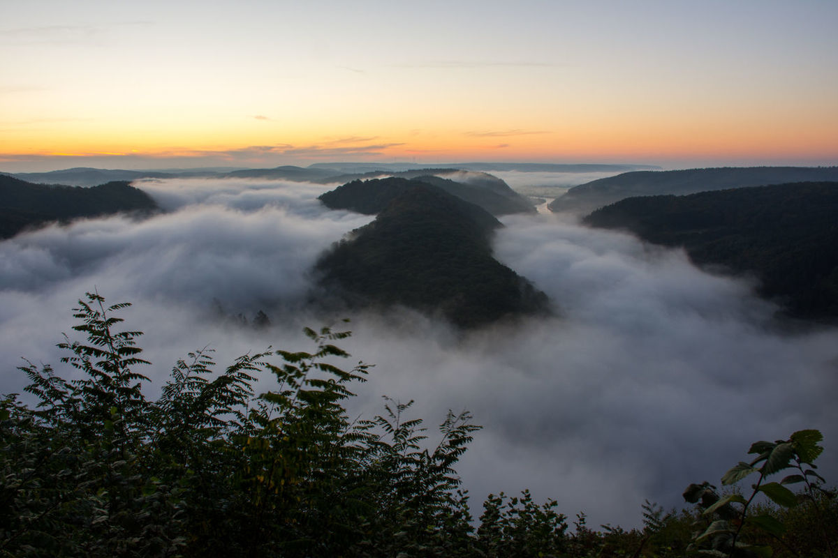 Above The Fog Autumn EyeEm Best Shots EyeEm Nature Lover Saarschleife Beauty In Nature Before Sunrise Forest Germany Misty Morning Misty Valley Mountain Nature Outdoors Saarland Scenics Sunset Tranquil Scene Tranquility View From Above