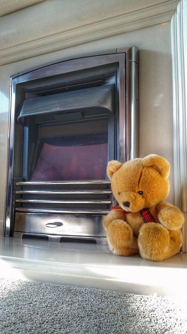 Fireplace Teddy Random Teddy Bear Electric Fire