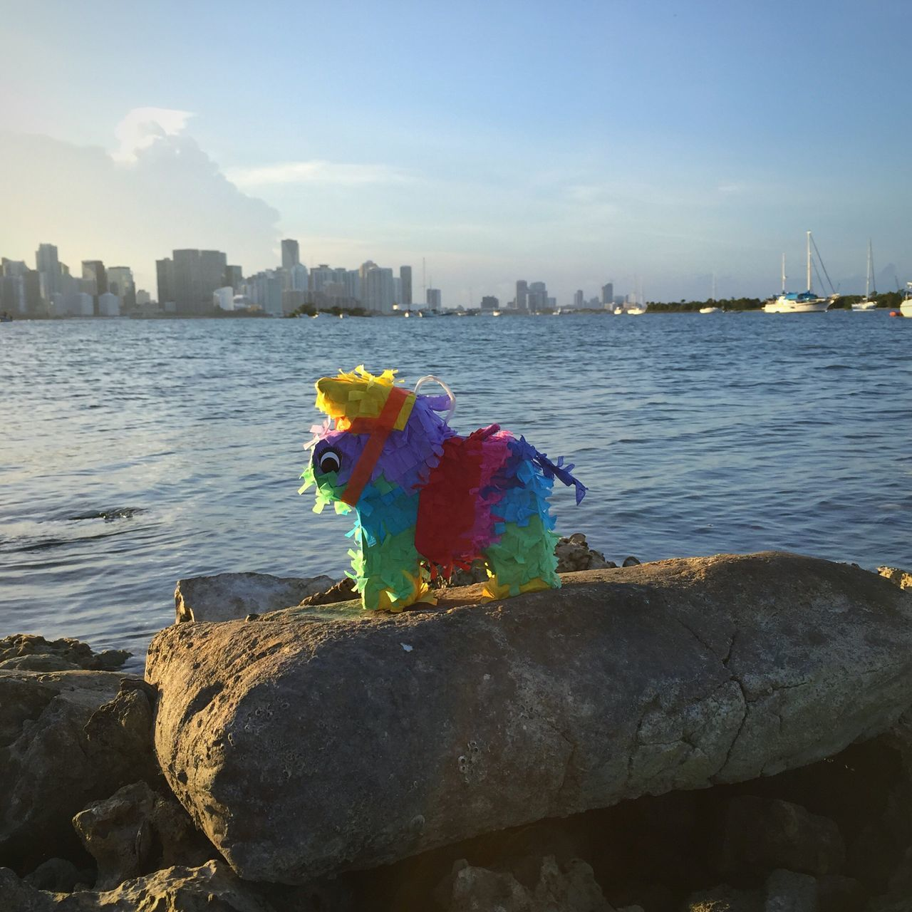 Piñata Celebration Birthday Weekend Weekend Activities Miami South Florida Ocean View Tropical Cityscapes City Life City Landscape Breathe