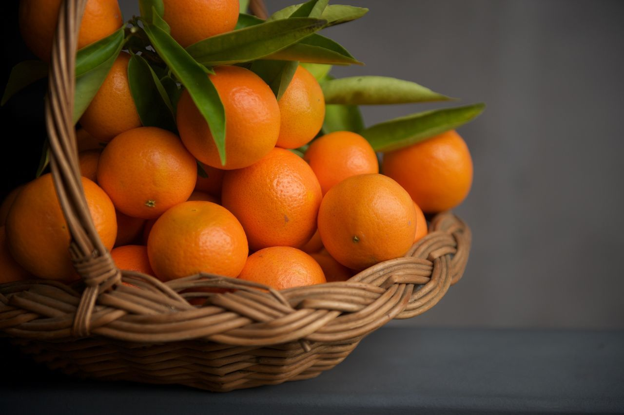 Freshly harvested tangerines in a gathering basket. Abundance Arrangement Basket Citrus  Close-up Food Food And Drink Freshness Fruit Full Frame Gathering Basket Healthy Eating Large Group Of Objects No People Orange Organic Ripe Still Life Tangerines Colour Palette
