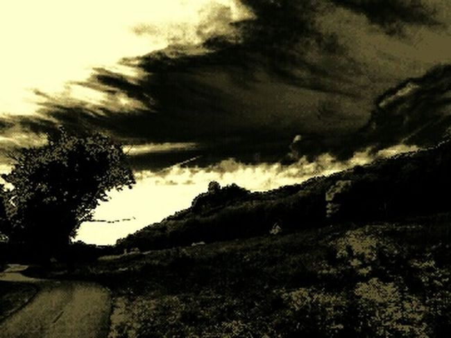 The Wizard Of Oz Sepia Tineless Monochromatic Path Bluff The Driftless Region