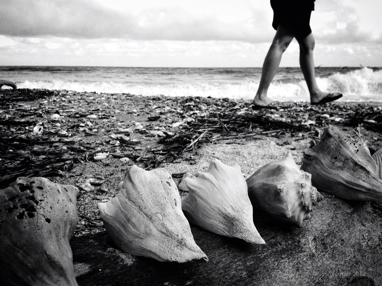 walking the conch line