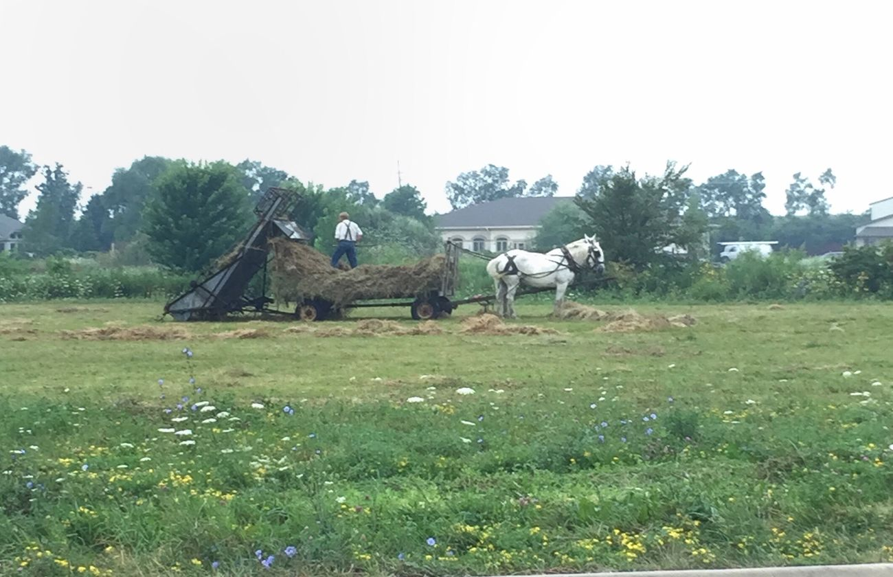 Horse power and manual labor