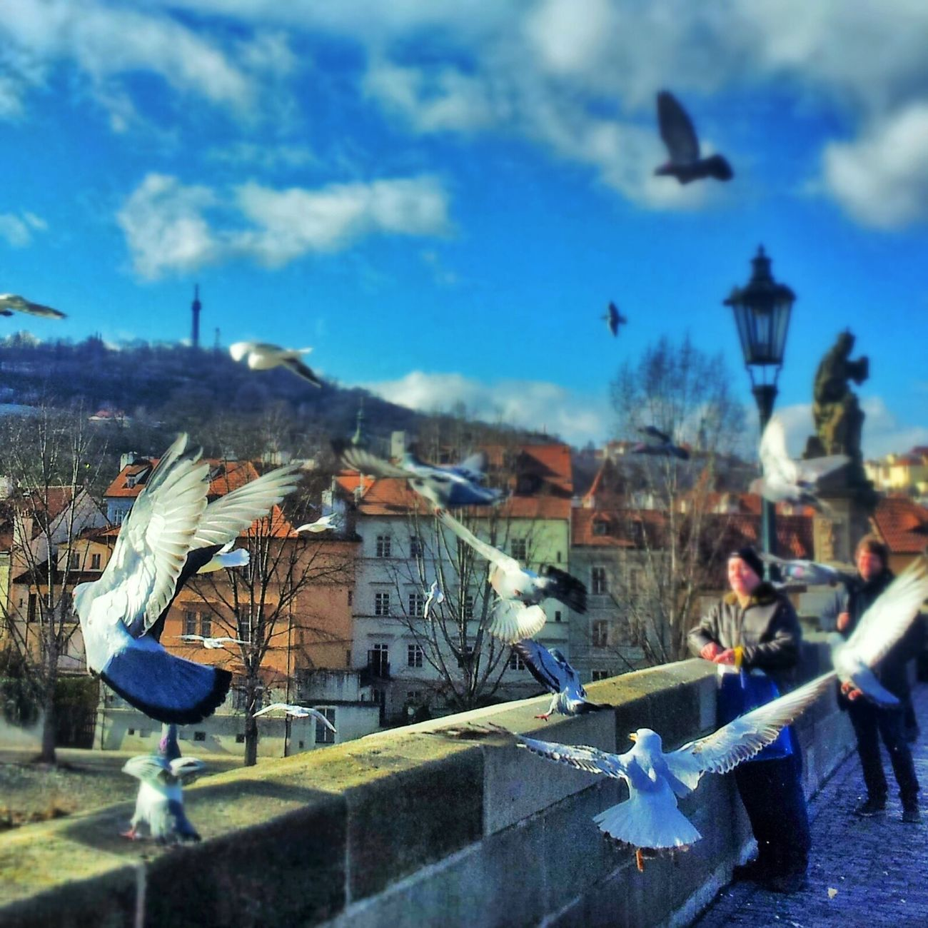 Air world Near And Far Pantone Colors By GIZMON Blue Sky At Karlův Most | Charles Bridge