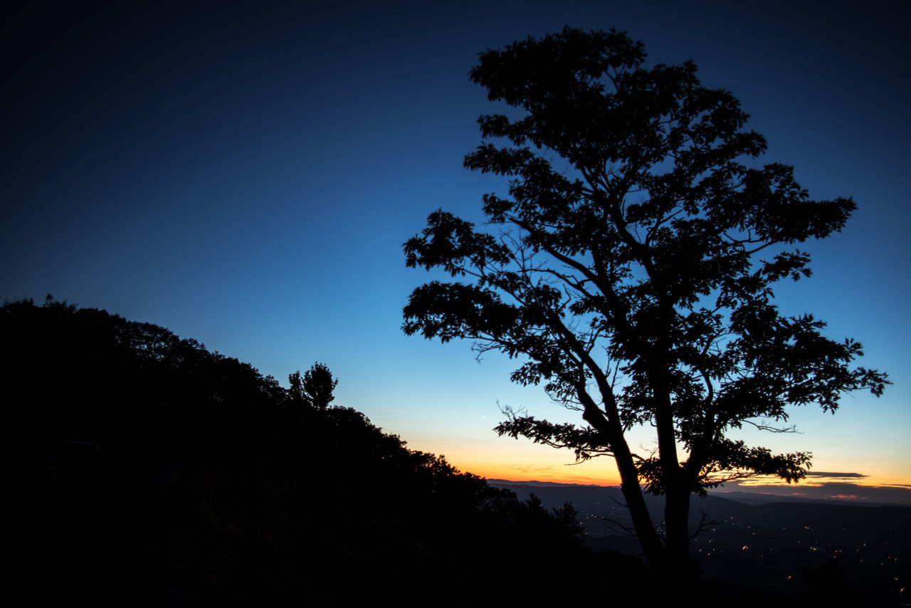 Beauty In Nature Blue Branch Clear Sky Forest Growth Landscape Nature Night No People Outdoors Scenics Shenandoah National Park Silhouette Sky Sunrise Sunset Tranquil Scene Tranquility Tree Tree Area Tree Trunk Twilight