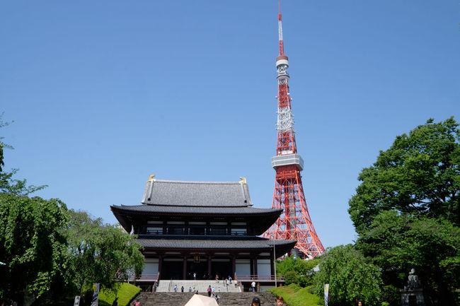 増上寺と東京タワー Architecture Built Structure Fujifilm Fujifilm X-E2 Fujifilm_xseries Japan Japan Photography Sky Tall - High Temple Tokyo Tokyo Tower Tower Zojojitemple 増上寺 東京 東京タワー