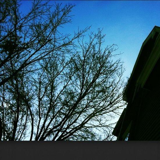 The sky's pretty today☁✨⛅