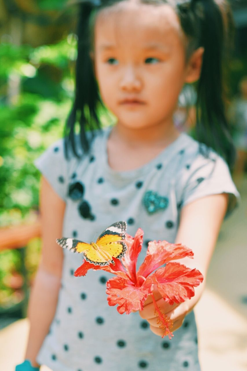 Girl Holding Red Hibiscus With Butterfly At Park