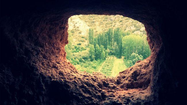 Camarena de la Sierra Teruel Vacas Fresquito Llibertat