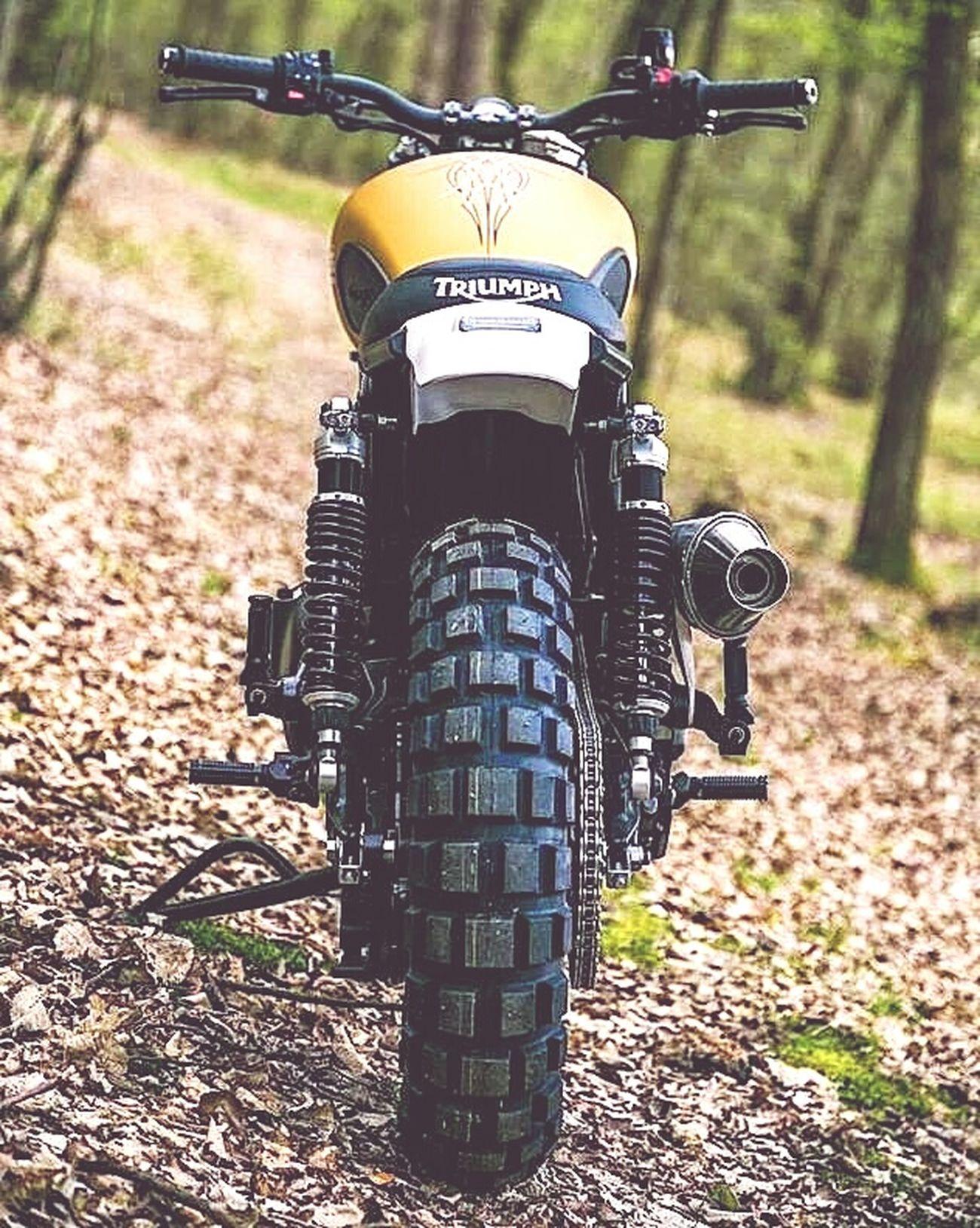 Motorcycle özgürlük Caferacer ile Dahaguzel Yollar Saygi Durusu 'na Geçer :)