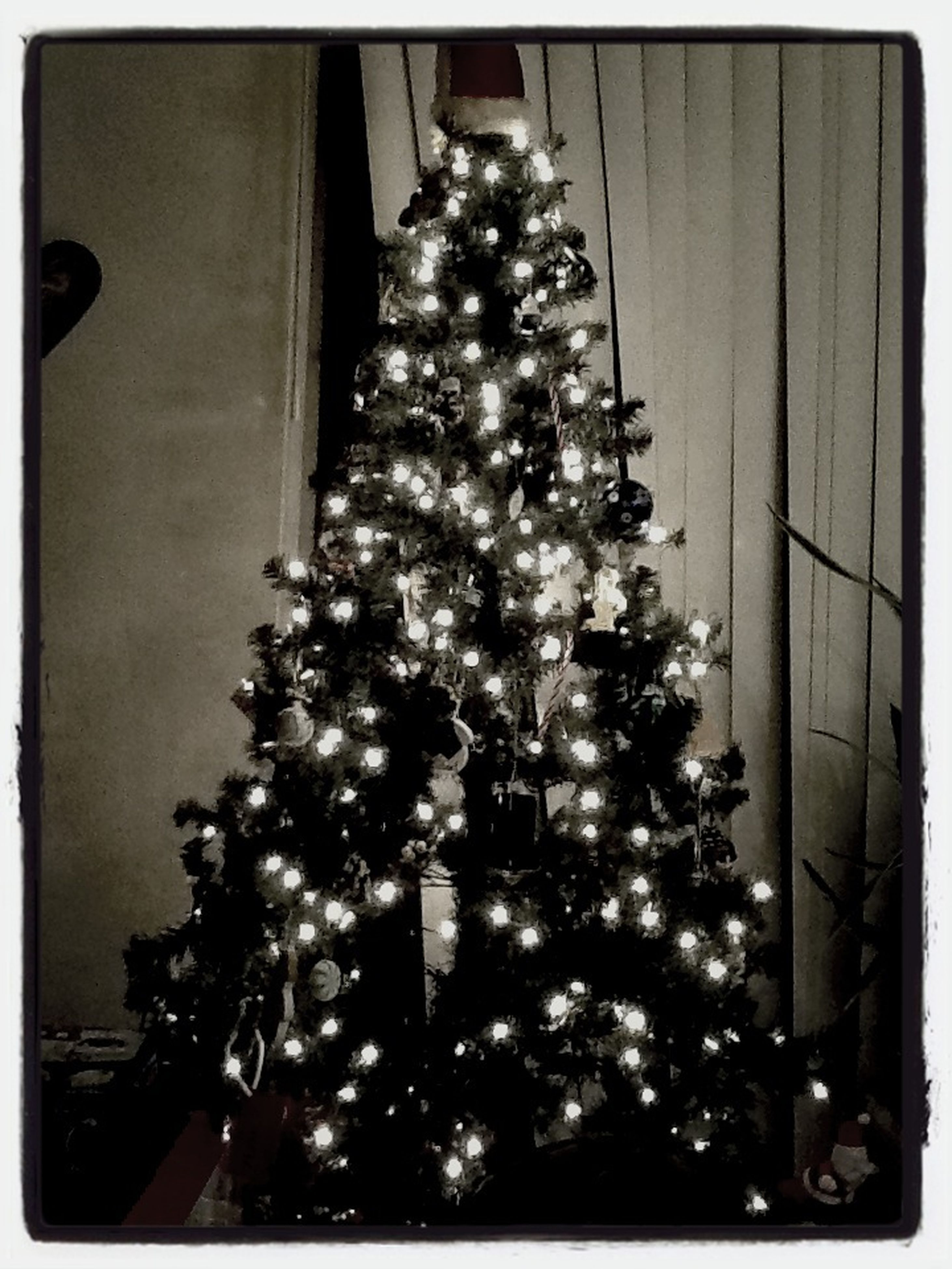 illuminated, decoration, transfer print, celebration, low angle view, indoors, hanging, christmas, christmas decoration, lighting equipment, christmas tree, decor, christmas lights, night, auto post production filter, built structure, architecture, christmas ornament, tradition, no people
