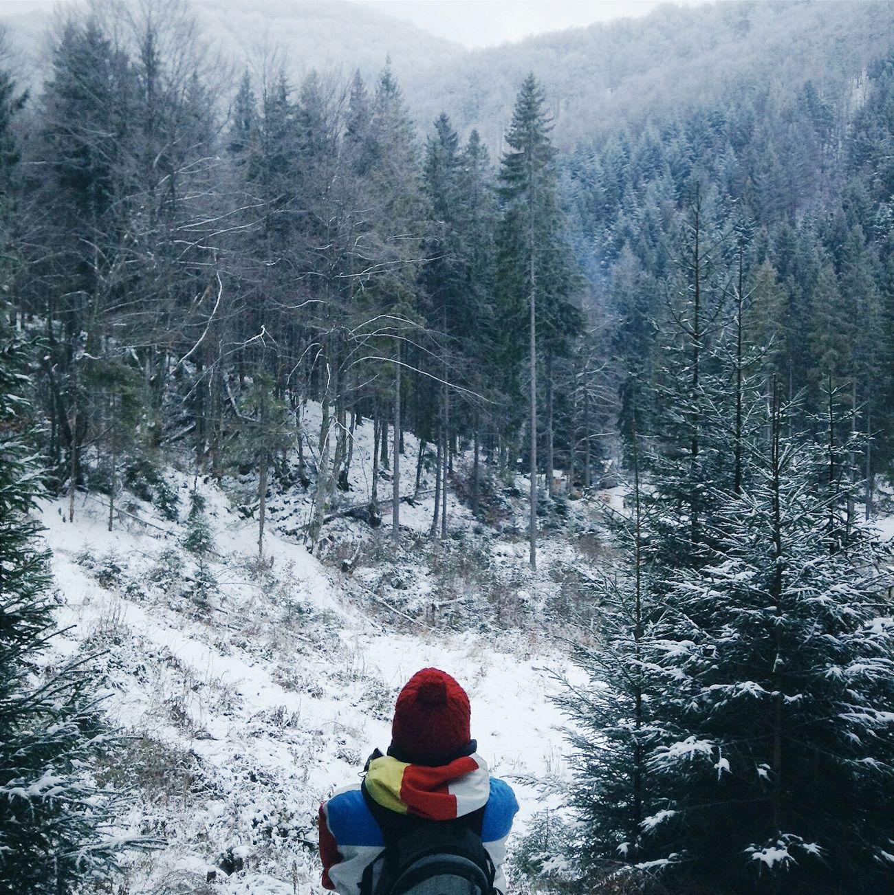 Relaxing Freedom My Life Nature Ukraine Karpathian Wintertime Winterwonderland