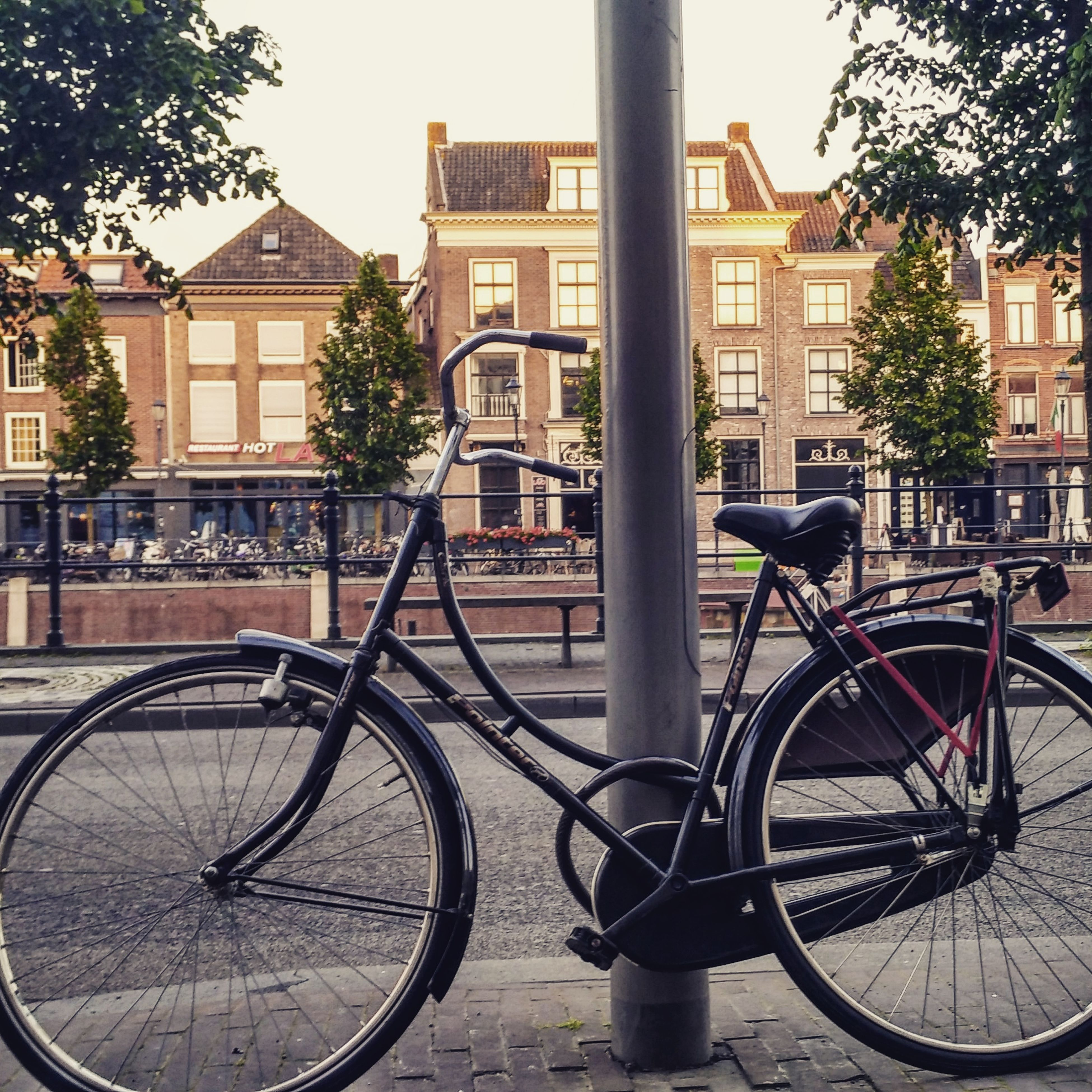 bicycle, architecture, building exterior, built structure, transportation, mode of transport, land vehicle, city, parked, railing, stationary, parking, tree, building, day, street, residential structure, outdoors, sky, residential building