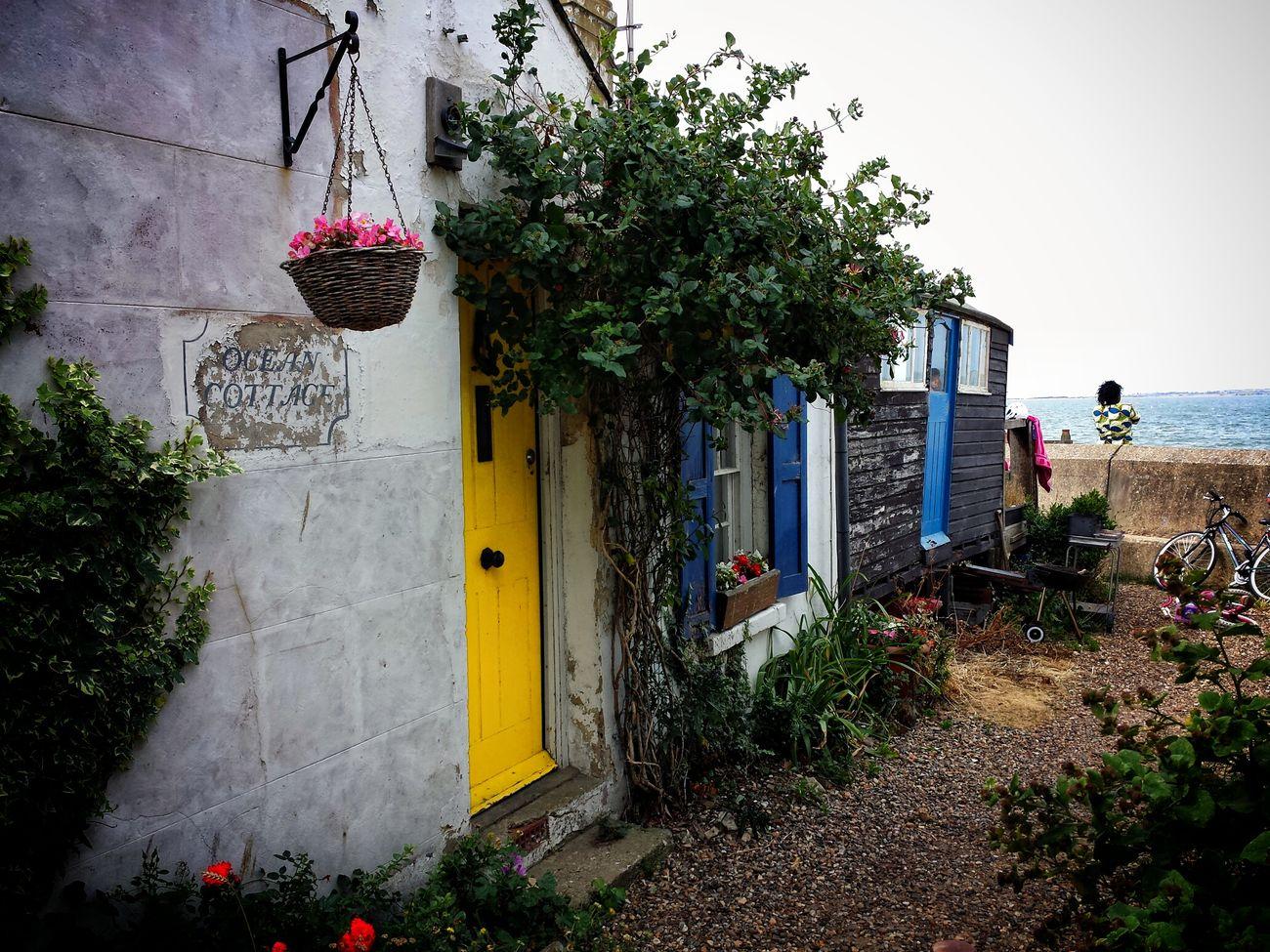 Ocean cottage Architecture Taking Photos