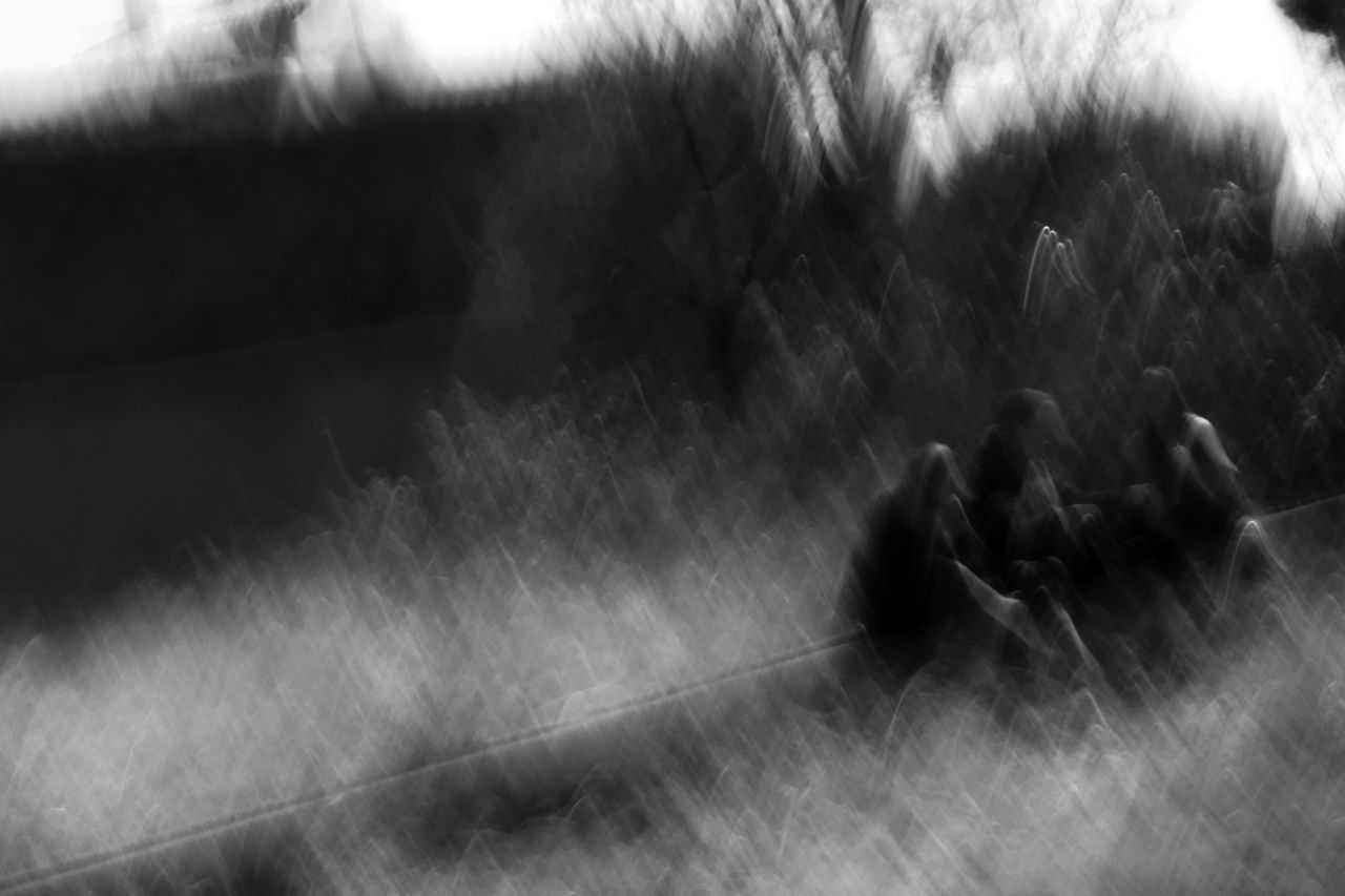 real people, blurred motion, motion, day, outdoors, men, lifestyles, togetherness, nature, grass, people