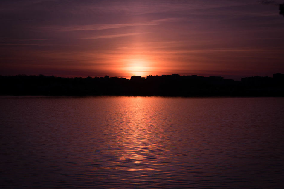 Sunset Reflection Water Lake Nature Sky Tranquility Outdoors Scenics No People Beauty In Nature Day Sun Washington, D. C. Springtime City Blossom Nature Photography Photography Tourism Nature Landscape Travel Destinations Beauty In Nature