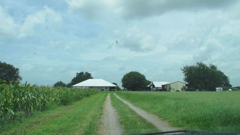 Road Way Jorney Home House Barn Field Corn Corn Field Day Way Home Farmer Life