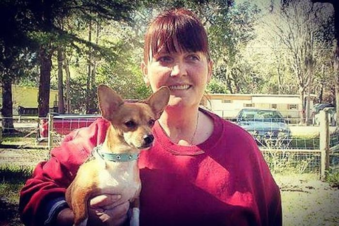 One of the greatest photos ever taken. Throwback Mom Chihuahua Dachshund Bubby Mysatan Imissyou Love Family RestinPeaceBubby