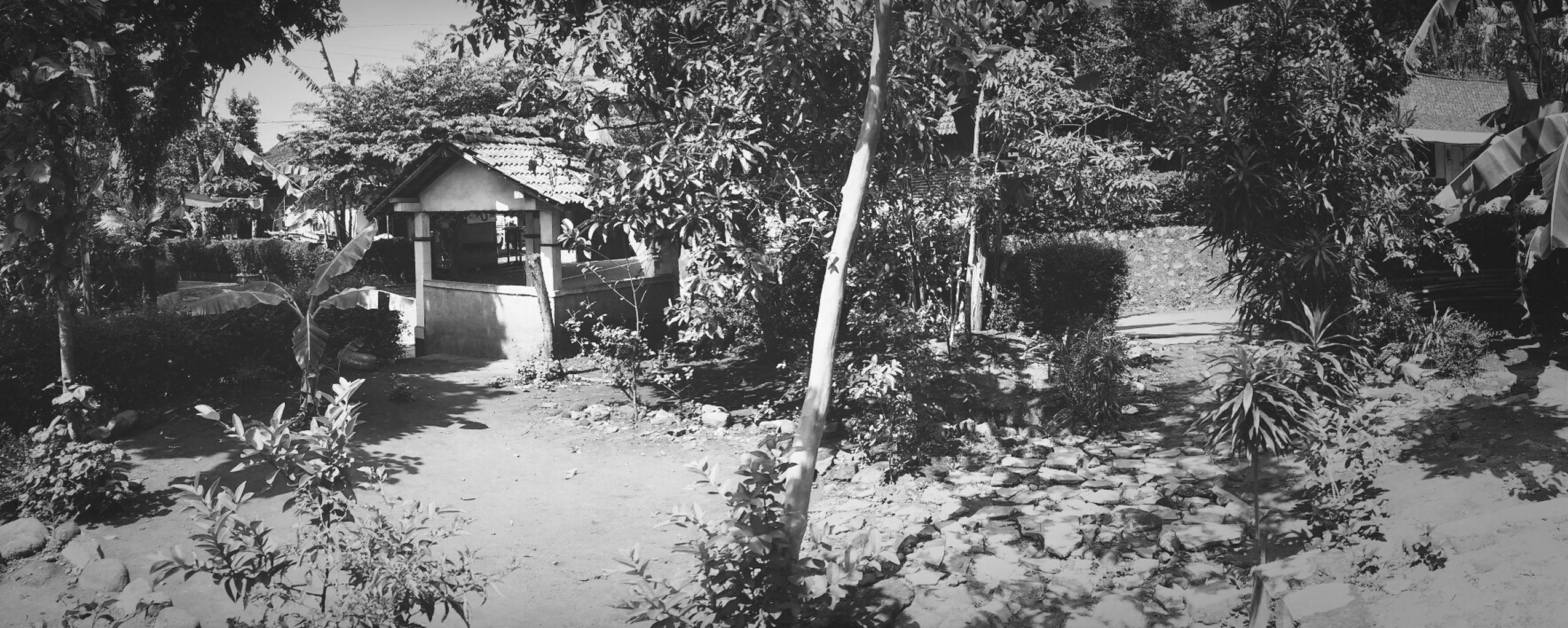 My Village EyeEm Indonesia