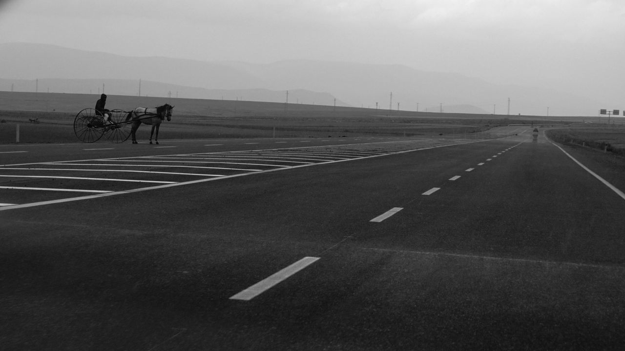 transportation, road marking, road, riding, outdoors, day, sky, landscape, the way forward, nature, mountain, animal themes, mammal, no people