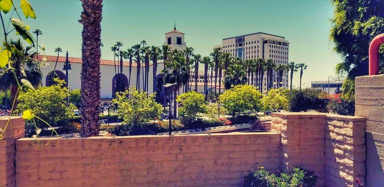 Outdoors California Cali Olvera Street Palm Trees Sunny Hispanic