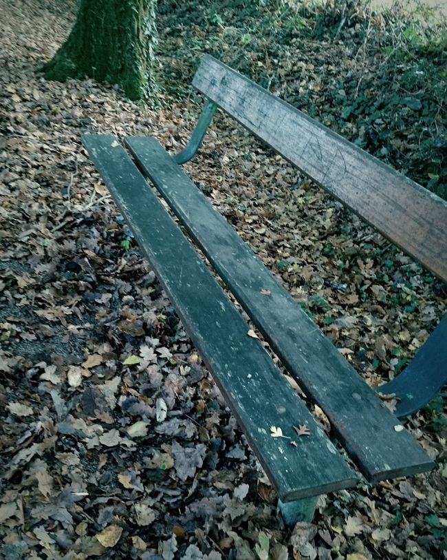 La solitude est un art - V.Ekelund Eyemoment Loneliness