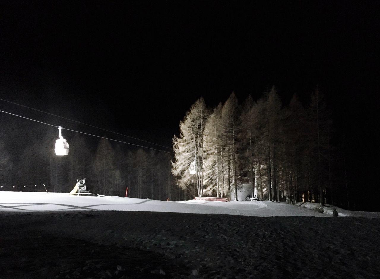 Snow Tree Night Nature Outdoors