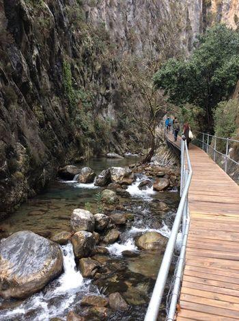 Canyon Nature River Riverside