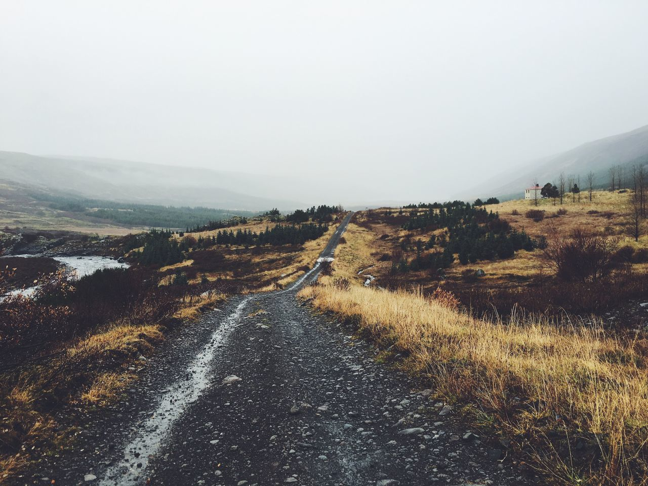 Intense fall day in Iceland Autumn Fall Iceland Icelandic_explorer Jointhemovement Awesome_shots Hot_shotz